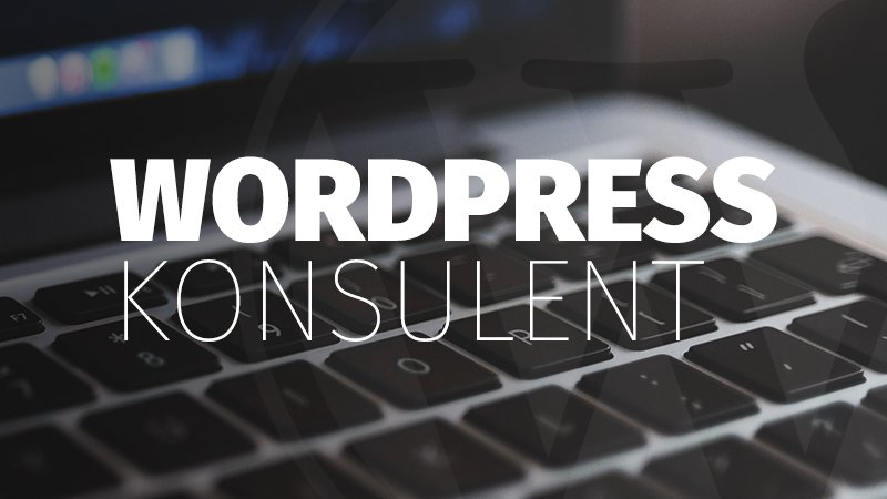 wordpress-konsulent