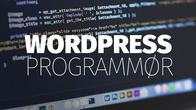 wordpress-programmør